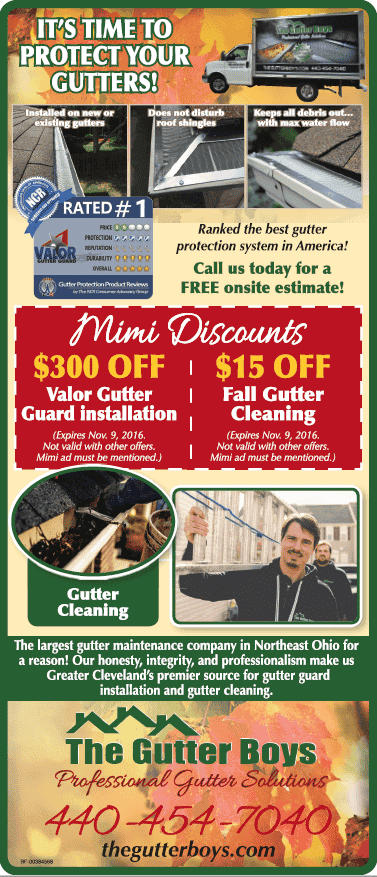 Gutter Cleaning & Guards Northeast Ohio